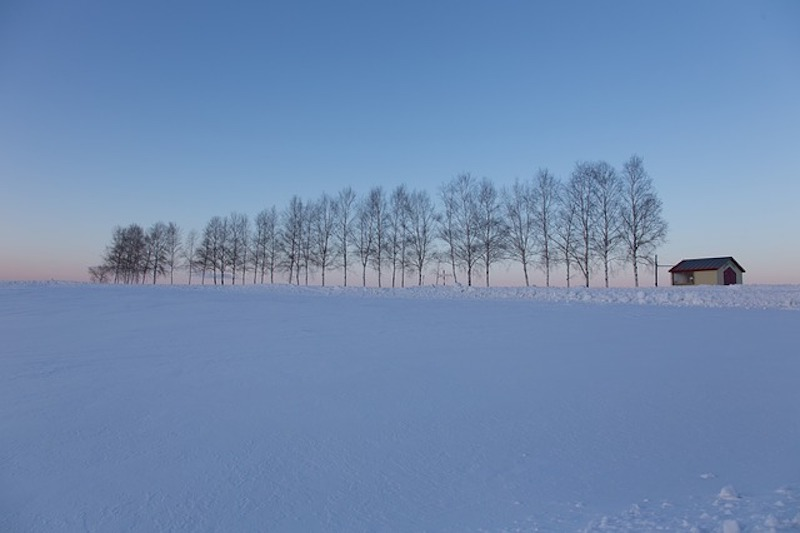 hokaido-956682_640